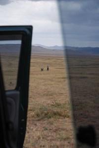 Gedroogde poep verzamelen voor de kachel Mongolië