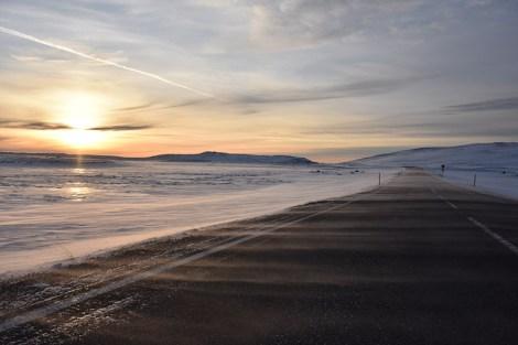Koude wind in Thingvellir IJsland sneeuw stuift over de weg