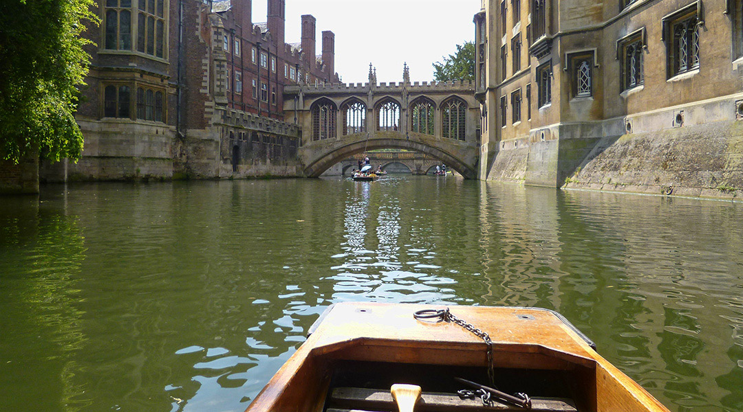 Cambridge punting in de zomer
