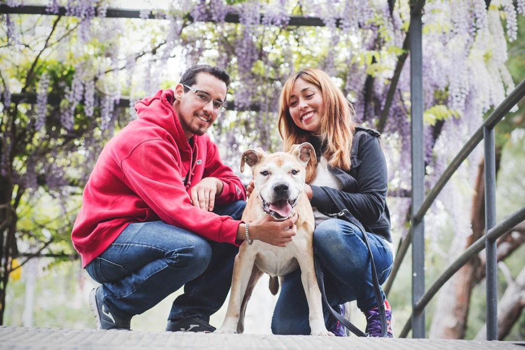 reportaje de perro PPP American Stanford y su familia