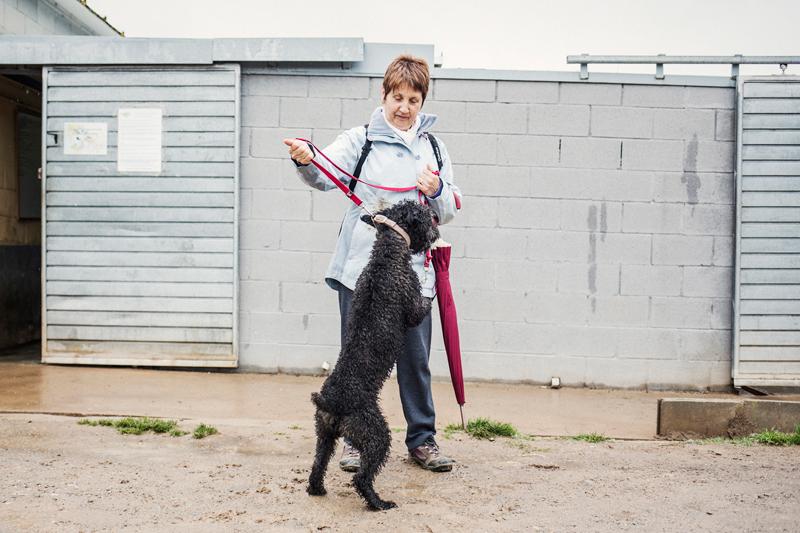 007_caminada popular solidaria _fotografo mascotas_adoptanocompres