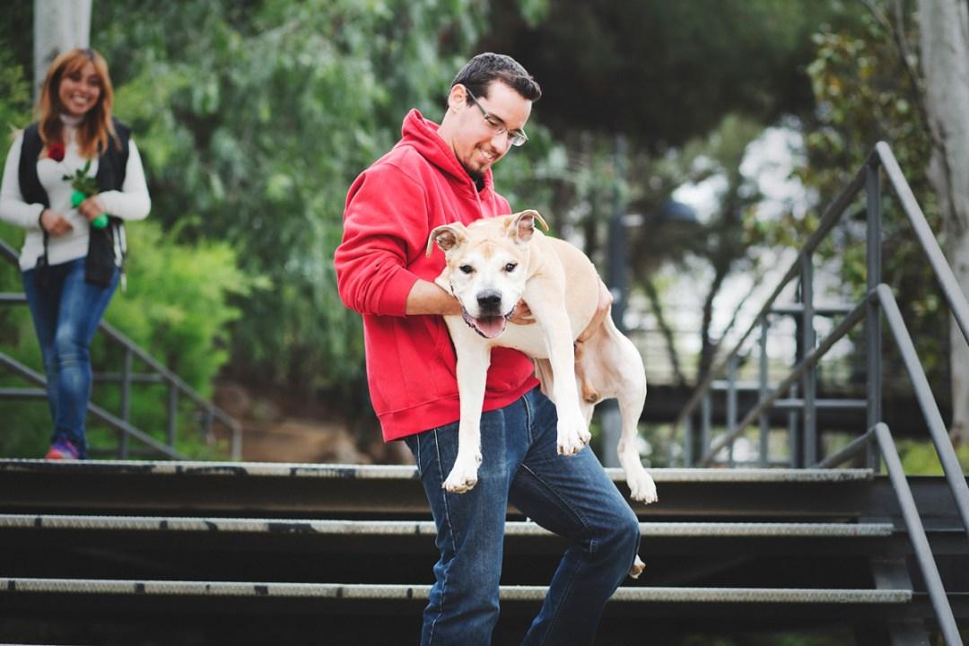 reportaje de perro PPP American Stanford senior