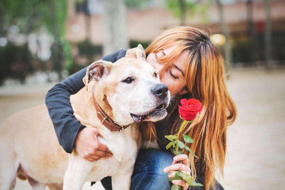 reportaje de perro PPP American Stanford y chica le besa