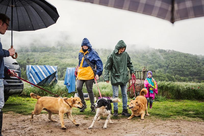 035_caminada popular solidaria _fotografo mascotas_adoptanocompres