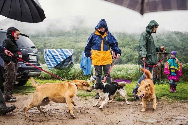 036_caminada popular solidaria _fotografo mascotas_adoptanocompres