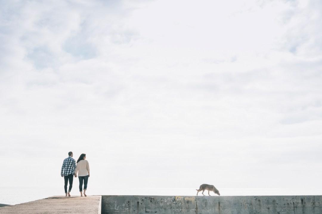 "Fotógrafo de Mascotas ""Colega en la Playa de la Marbella"""