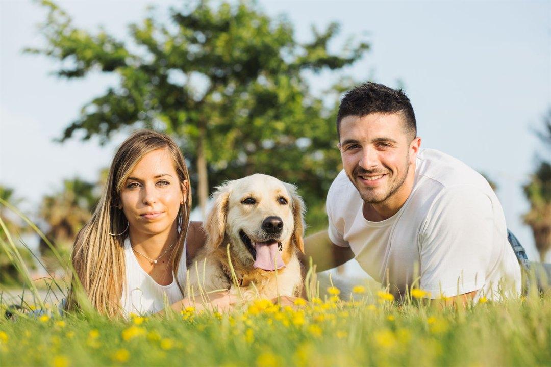 golden retriever con su familia