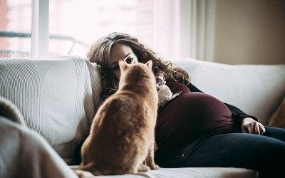 Fotógrafo de mascotas: Honey
