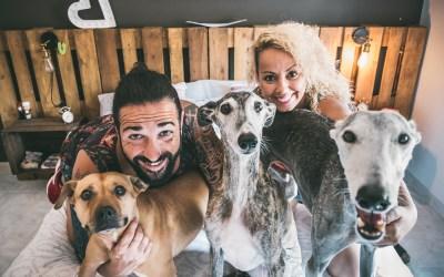 Fotógrafo de mascotas: PreBoda en familia altamente amorosa