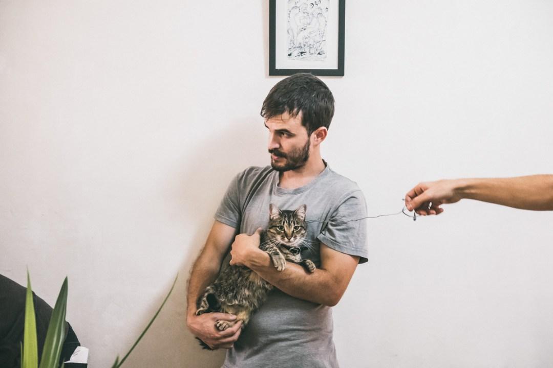 making of gato atigrado