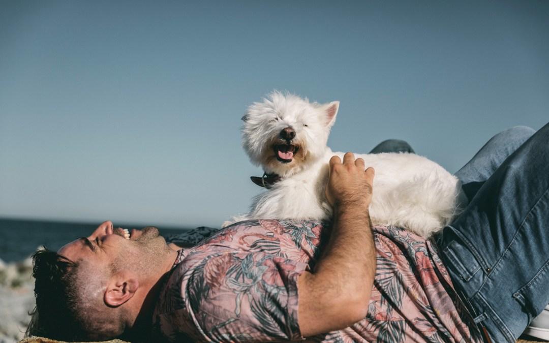 Fotógrafo de Mascotas: Nuca, una westie reKetebonita