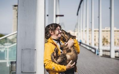 Protegido: Fotógrafa de Mascotas: 80 happy day