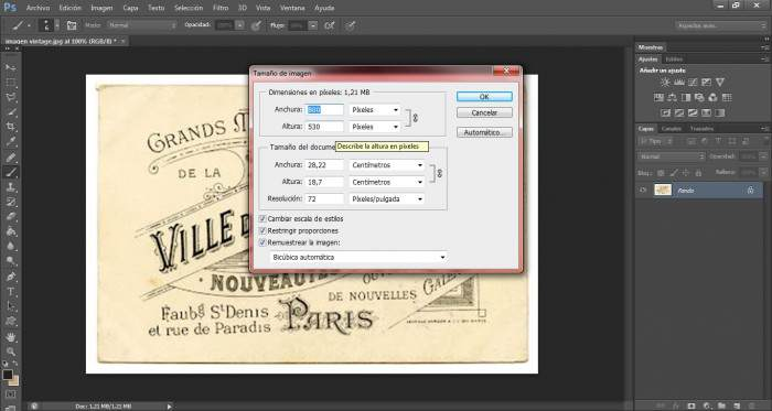 10-transfers-ampliar-pixeles-de-una-imagen
