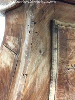 Desinfectación de la madera