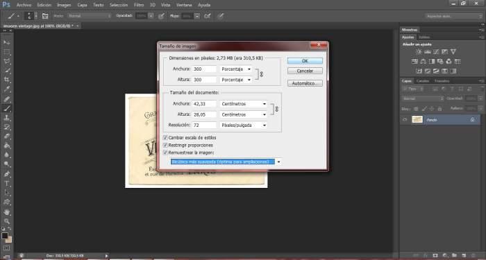 8-transfers-ampliar-pixeles-de-una-imagen