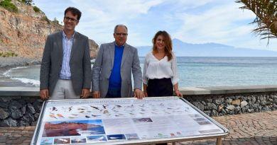 Reportaje semanal: Turismo a vista de pájaro