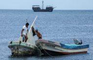 Pesca furtiva deja pérdidas del 30 por ciento