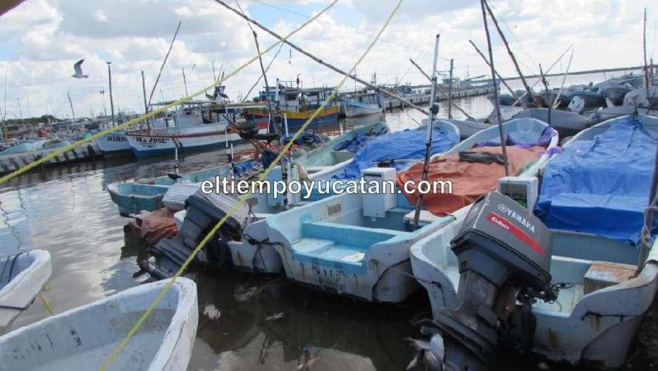 Pescadores dormían cuando fueron asaltados