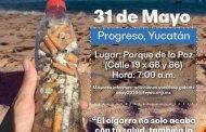 """El primer """"Colillatón 2019"""" en Progreso"""