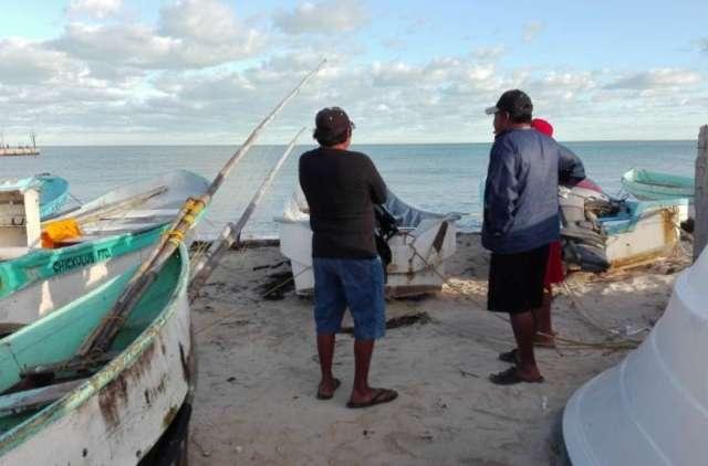 Ribereños sin pescar pulpo