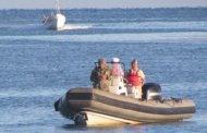 Escasez de pepino de mar por los furtivos