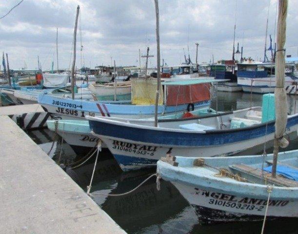 Sector pesquero pedirá vigilancia total en La Caleta