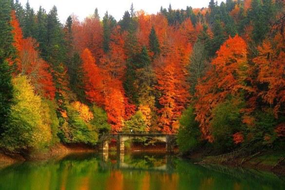 Los 5 Mejores destinos para disfrutar en otoño.