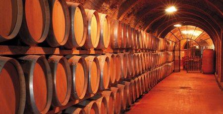El origen de los vinos D.O Costers del Segre