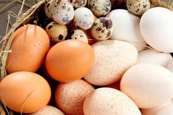 El huevo, un alimento redondo cargado de nutrientes.