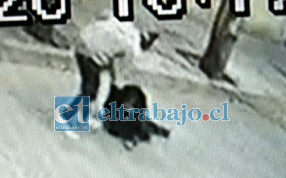 El delincuente forcejeando con la víctima para robarle su cartera quedó grabado en cámaras.