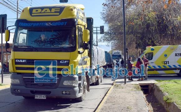El camión detenido para que Carabineros adopte el procedimiento de rigor.