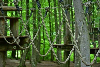 Parque aventuras árboles