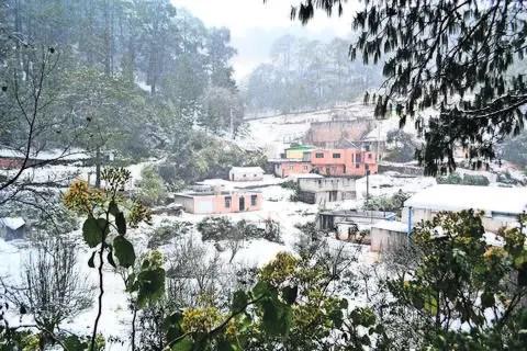 Pinal de Amoles y Amealco, bajo cero   Querétaro