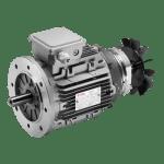 Motori Elettrici Autofrenant