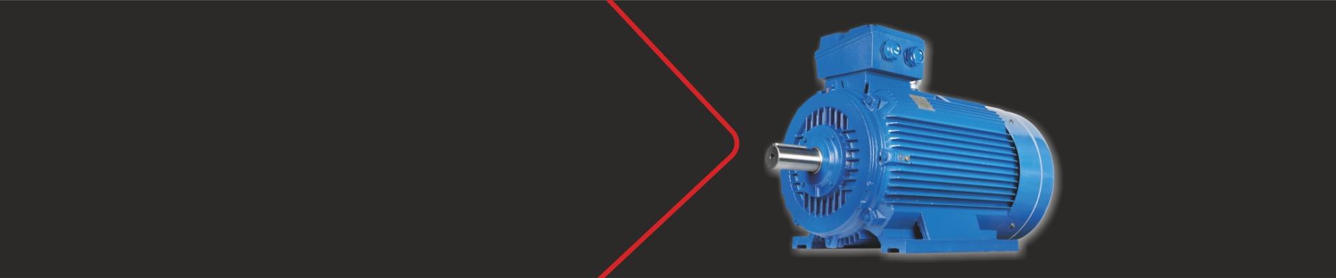 Motore in ghisa blu elvem