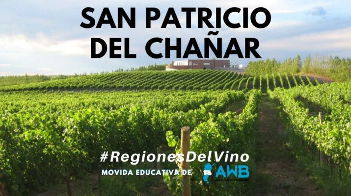 #RegionesDelVino - San Patricio del Chañar