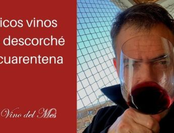 5 ricos vinos que descorché en cuarentena