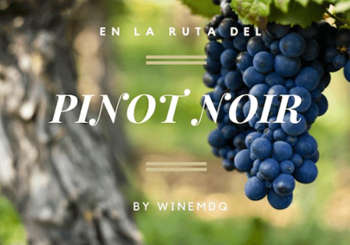 En la Ruta del Pinot Noir