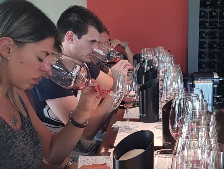 Catando vinos