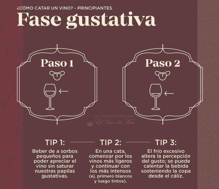 Cómo se cata un vino - Fase gustativa