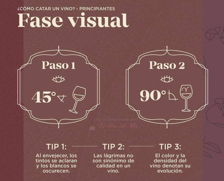 Como catar un vino - Fase Visual