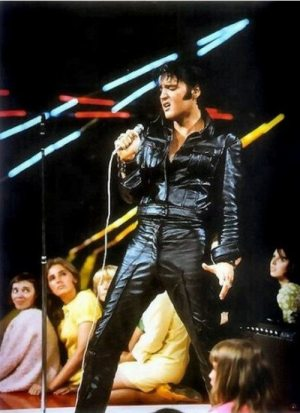 Golden Caricatures Volume 5: photo of Elvis in the 1968 NBC TV Special (standing up).