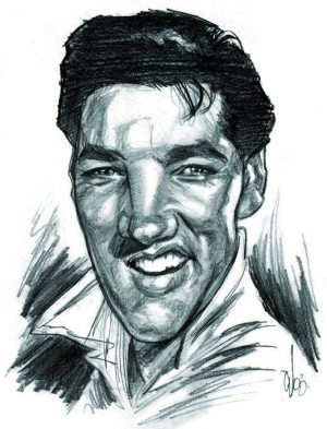 Golden Caricatures Volume 6: Elvis in the 60s by Chris Wahl.