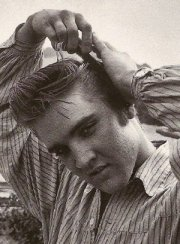 elvis haircut sign of