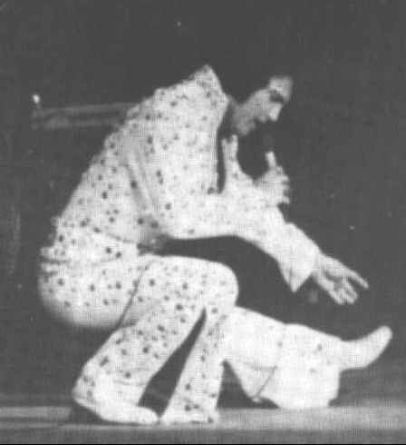 https://i0.wp.com/www.elvisconcerts.com/pictures/s73070104.jpg