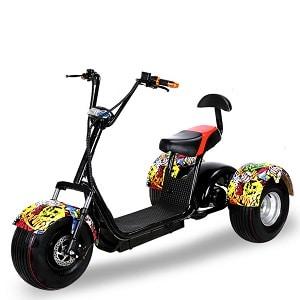 Трицикл ElWinn CCS-180