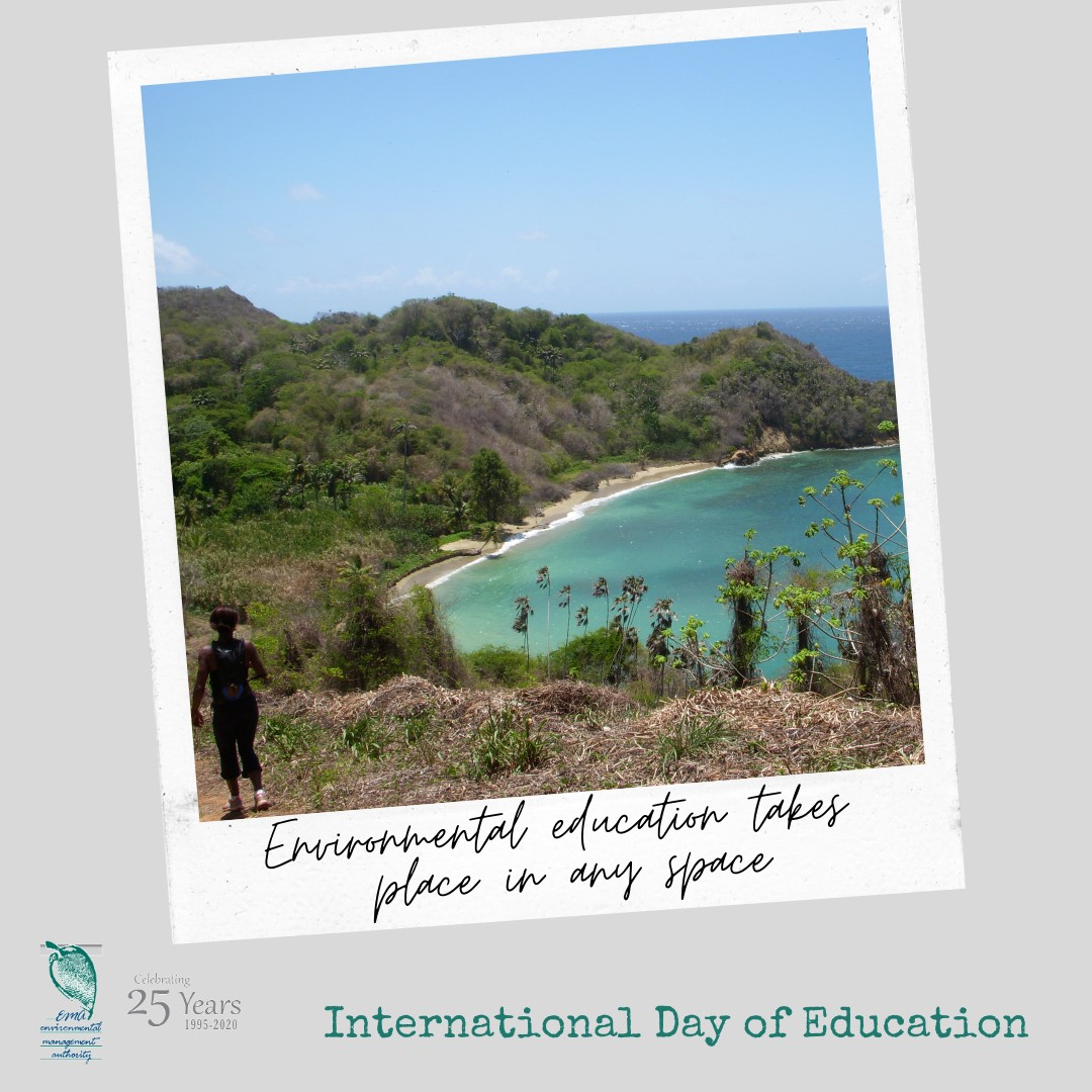 International day for education