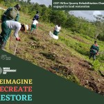 WED - Reimagine recreate restore