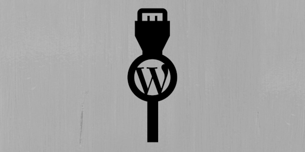 The 4 Questions To Ask Before Installing A WordPress