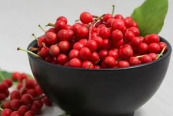 Planta dos 5 sabores